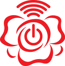 robot rose telecare